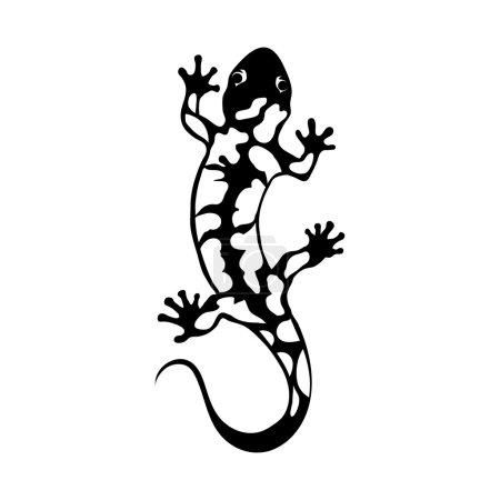 black and white salamander logo
