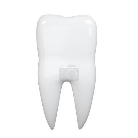 3D Illustration des Zahnes