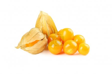 Ripe physalis isolated