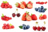 Borůvky, jahody, maliny, rybíz a třešně