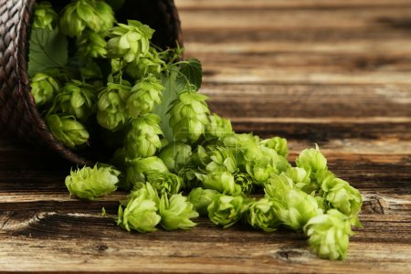 Photo for Hops in basket on brown wooden background - Royalty Free Image