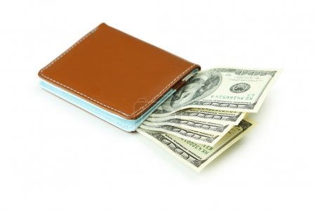 Wallet with dollars banknotes
