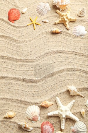 Photo for Sea shells on a beach sand - Royalty Free Image