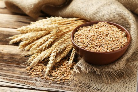Photo for Ears of wheat and bowl of wheat grains on brown wooden background - Royalty Free Image
