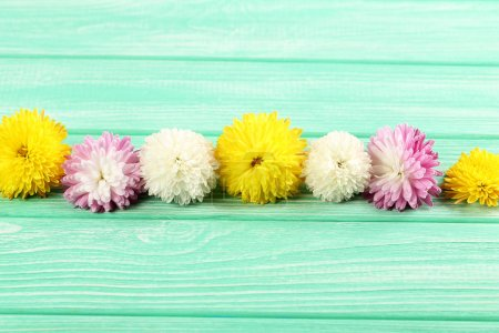 Bouqet of colorful chrysanthemums