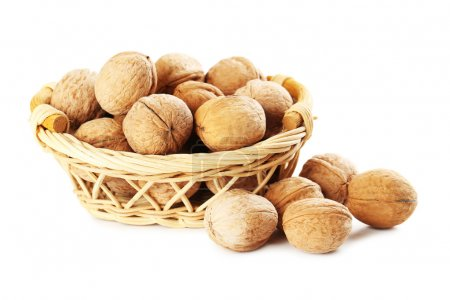 Healthy walnuts in shells