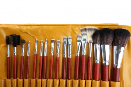 Makeup brushes set in case