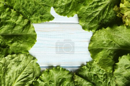 Photo for Fresh salad lettuce on a blue wooden background - Royalty Free Image