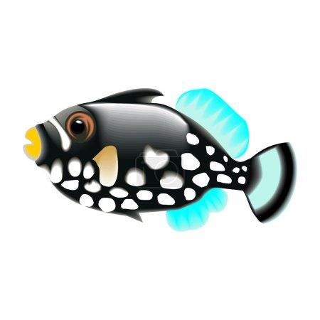 Illustration pour Poissons d'aquarium - image libre de droit