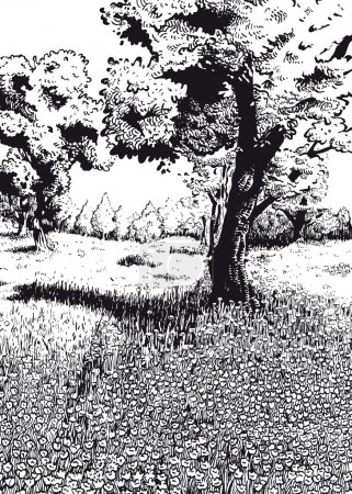 Spring black and white version