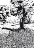 Frühling schwarz-weiß-version