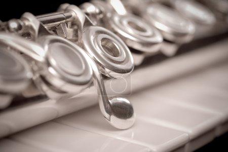 Photo pour Flûte et piano - image libre de droit