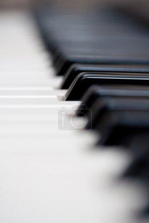Photo pour Touche piano - image libre de droit