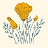 Orange máku design