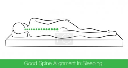 Illustration for The correct spine alignment when sleeping by on the side sleeping position. - Royalty Free Image