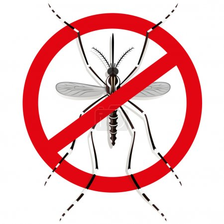 Nature, Aedes Aegypti mosquitoes stilt with prohibited sign, top view. Ideal for informational and institutional related sanitation and care