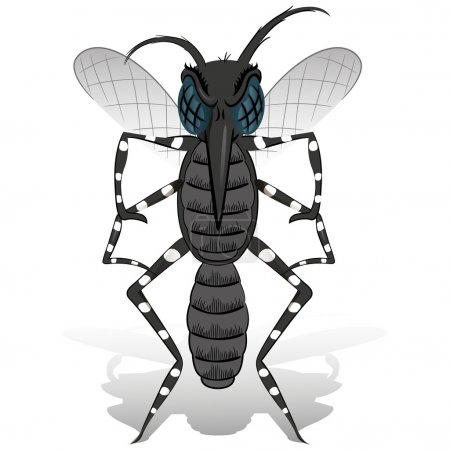 Aedes aegypti Mosquito mascot stilt front. Ideal for informational and institutional related sanitation and care