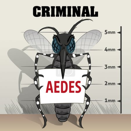 Aedes aegypti mosquitoes sting in jail, holding poster. Ideal for informational and institutional related sanitation and care