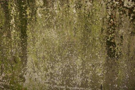 Photo pour Vieilli vieilli fissuré rude ciment béton fond grunge - image libre de droit