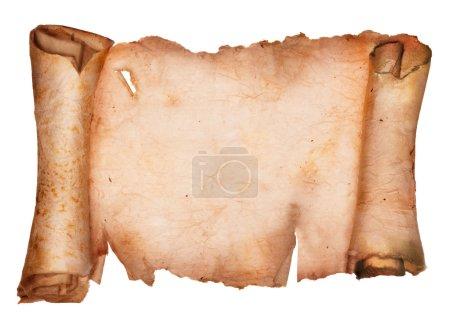 Photo pour Vieux papier sec avec bords déchirés frisés isolés sur un fond blanc - image libre de droit
