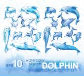 pencil sketches of dolphins