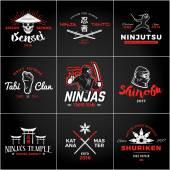 Set of Japan Ninjas Logo Katana weapon insignia design Vintage ninja mascot badge Martial art Team t-shirt illustration concept