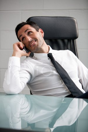 Portrait of a male businessman in the office talking over the phone