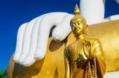 Sochy Buddhy v Wat Doi Kham