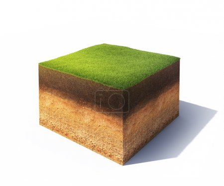 Photo for 3d model of cross section of ground with grass isolated on white - Royalty Free Image