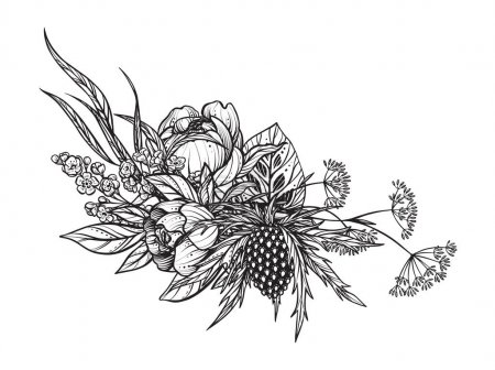 Illustration for Beautiful vector composition of black and white feverweed, peony flowers, isolated on white background. Amasing hand drawn illustration for polygraphic design, coloring book. - Royalty Free Image