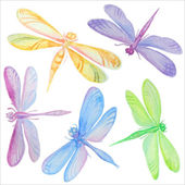 Collection of watercolor dragonflies