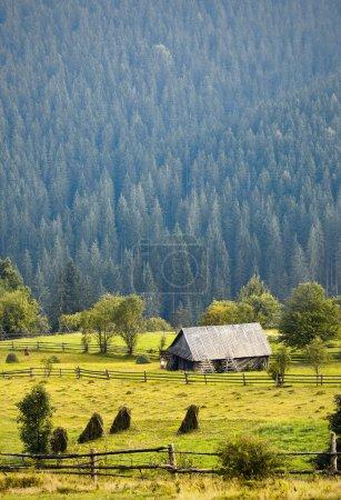 Casa en bosque de montaña