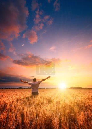Human in a wheat field