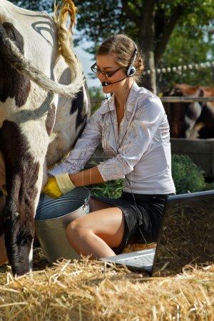 Photo pour Femme d'affaires traire vache à la ferme - image libre de droit