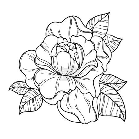 Fantasy peony flower.