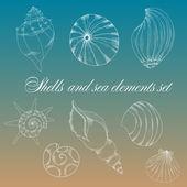 Shells and sea elements set