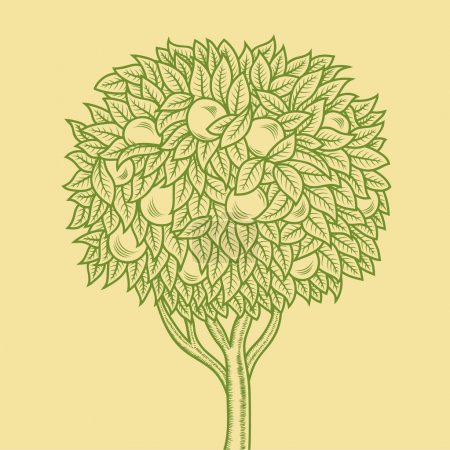 hand-drawn orange tree