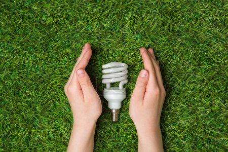 Photo pour Main d'enfant tenant lampe éco économie d'énergie sur fond d'herbe verte - image libre de droit
