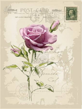 Illustration for Vintage postcard with a beautiful rose hand-drawing - Royalty Free Image