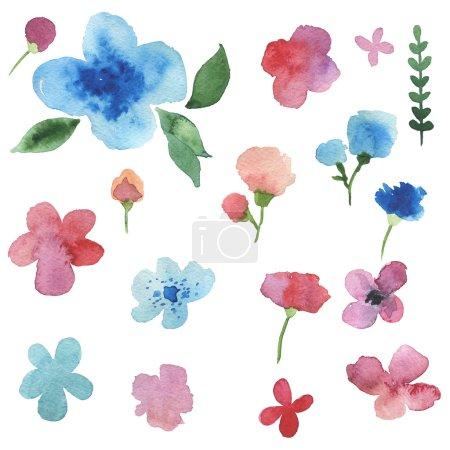 Acuarela pintada a mano plantas y flores .
