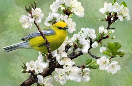 Photo for Illustration of a bird on a branch of cherry - Royalty Free Image