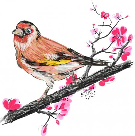 Goldfinch bird on a blossom branch sakura.
