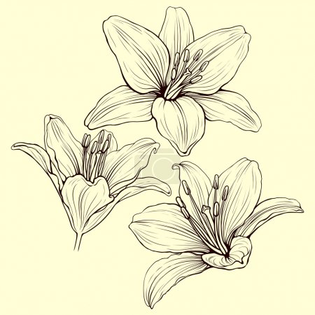 lily ink