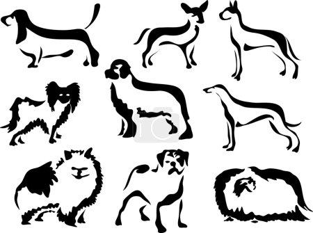 Set of pedigree dogs