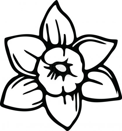 Drawing of a daffodil flower.