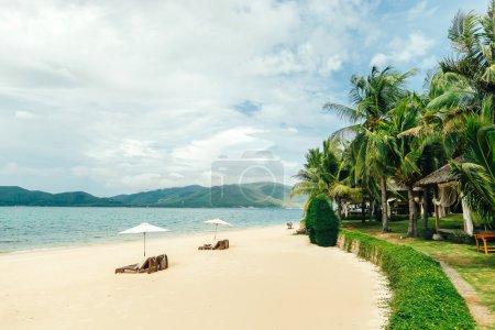 white sand beach with sunbeds and palms, Hon Tam, Nha Trang harb