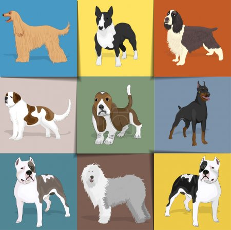 Set of dogs with square background