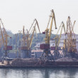 Постер, плакат: Odessa Ukraine July 26 2015: Cargo cranes on rails and cargo