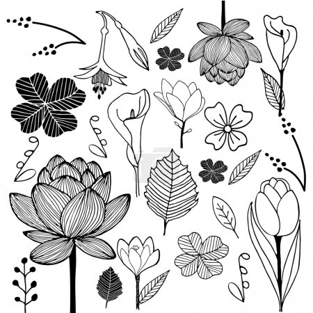 Flower and leaf hand drawn sketch doodle black and...