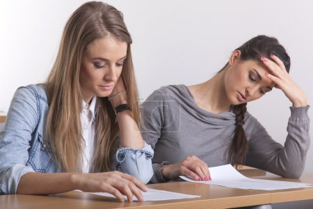 Two students learning